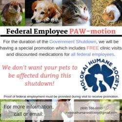 Governtment Shutdown PAW-motion!